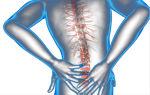 Мануальный терапевт и остеопат: в чем их разница