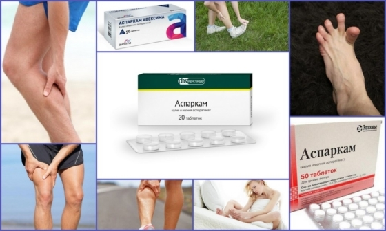 Аспаркам при судорогах в ногах: применение, состав