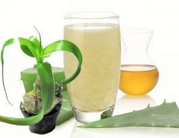 Индийский лук — рецепт настойки для больных суставов