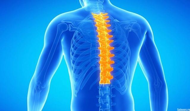 Шейный радикулит – симптомы, причины возникновения, признаки и основные методы лечения