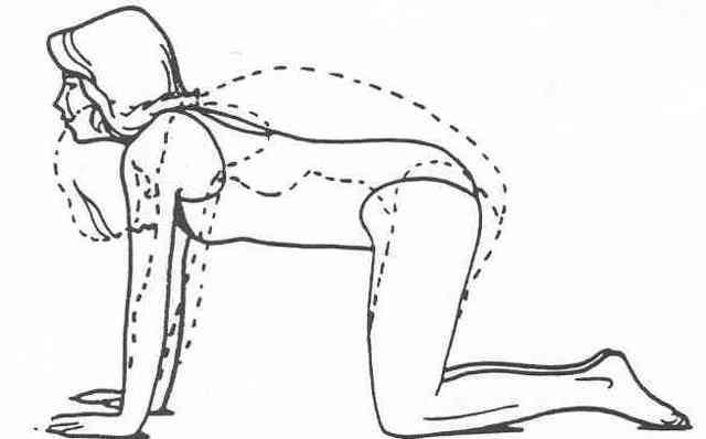 Йога при сколиозе 1, 2 и 3 степени: комплекс упражнений и асанов
