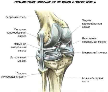 Причины нестабильности коленного сустава и ее лечение