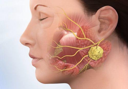 Остеомиелит симптомы и лечение