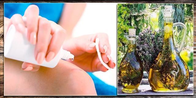 Правила применения каланхоэ для лечения суставов