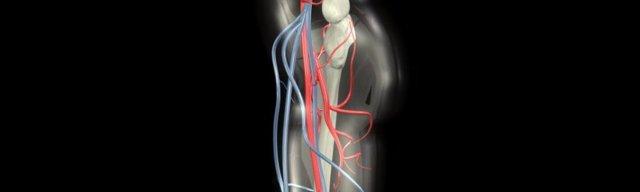 Болезнь Рота: причины, симптомы и методы лечения