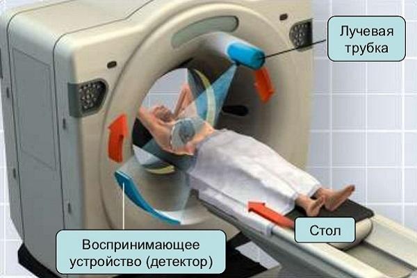 Что лучше МРТ или КТ позвоночника: в чем разница
