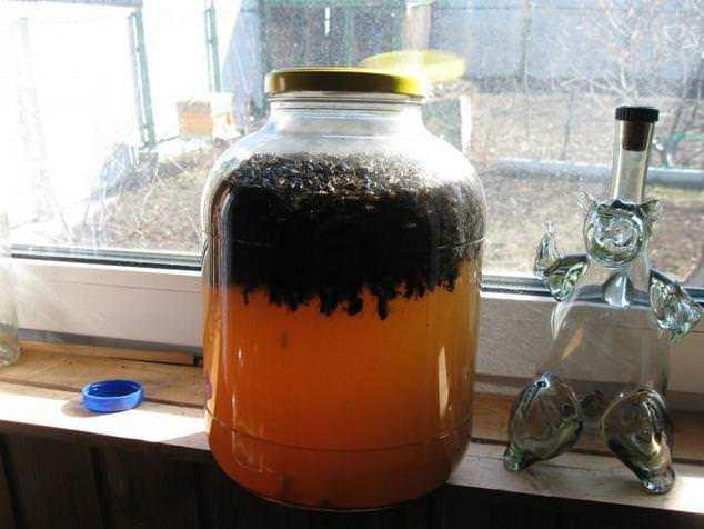 Пчелиный подмор при заболеваниях суставов