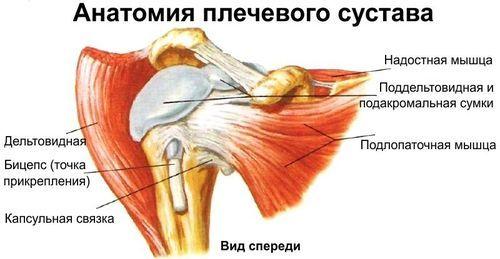 Вывих плеча: симптомы, первая помощь и лечение