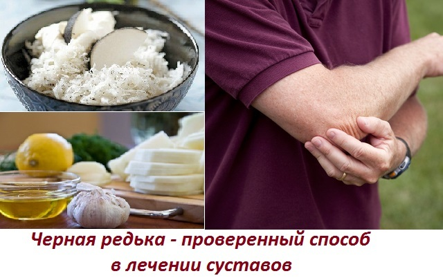 Лечебные свойства черной редьки при болезнях суставов