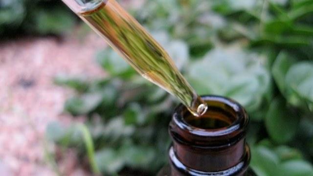 Золотой ус - настойка на водке для лечения суставов
