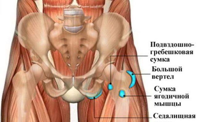 Ушиб тазобедренного сустава: первая помощь, лечение
