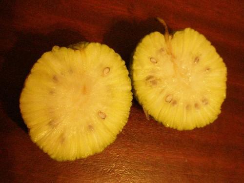 Адамово яблоко - рецепт настойки для суставов и ее эффективность