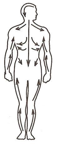 Дарсонваль при шейном остеохондрозе