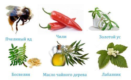 Бальзам Огаркова для лечения суставов: применение и цена